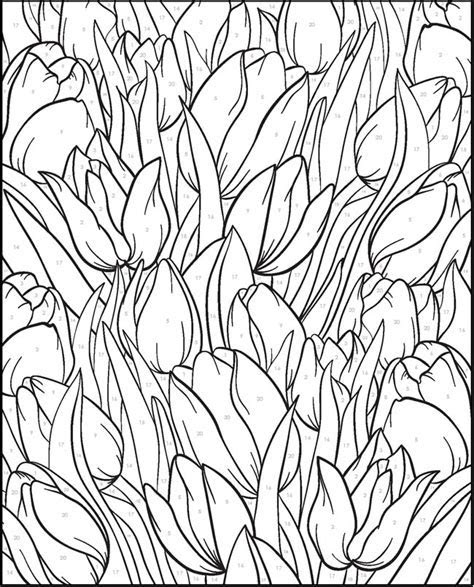 Creative Haven Floral Design Color By Number Coloring Book 2018