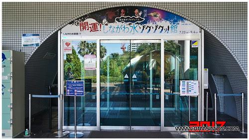 品川水族館26.jpg