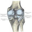 Acupuncture Reduces Knee Osteoarthritis Pain - St Louis Acupuncture
