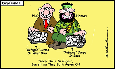 Dry Bones cartoon, Gaza, Palestinian Arabs, Hamas, PLO,  Apartheid,