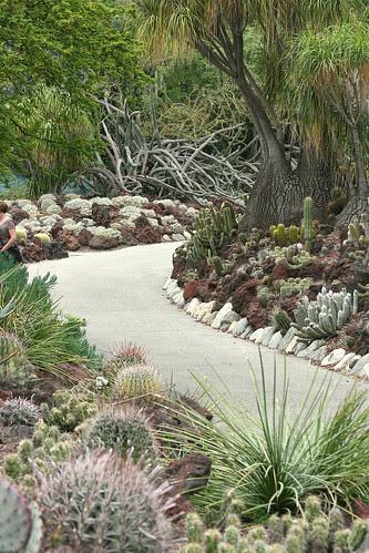 huntington succulent paths