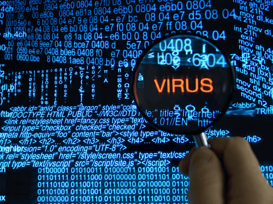 Learn everything about Trojans, Viruses and Worms