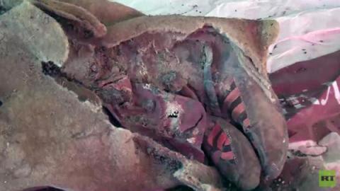 ¿La prueba de los viajes en el tiempo? Una momia de 1.500 años lleva unas Adidas (VIDEO)