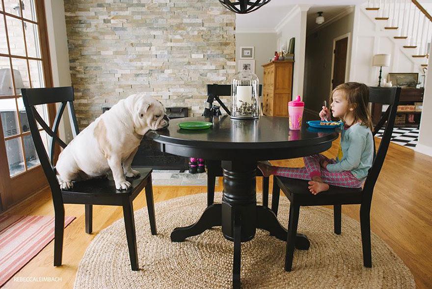 girl-english-bulldog-friendship-photography-lola-harper-rebecca-leimbach-5