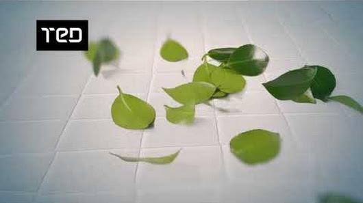матраци тед бг Матраци ТЕД имат ново изкушение за вас   революционния матрак Eco  матраци тед бг