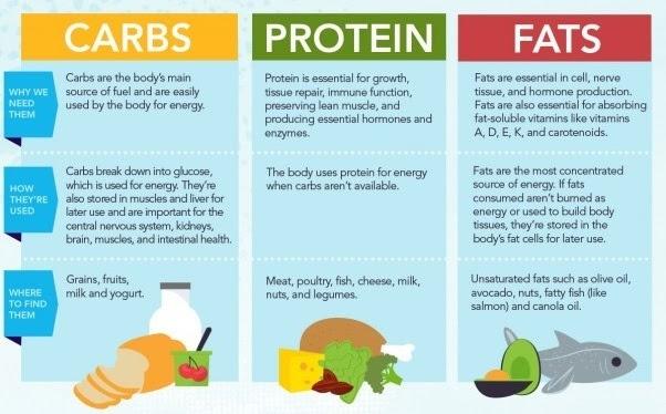 how can i estimate body fat percentage