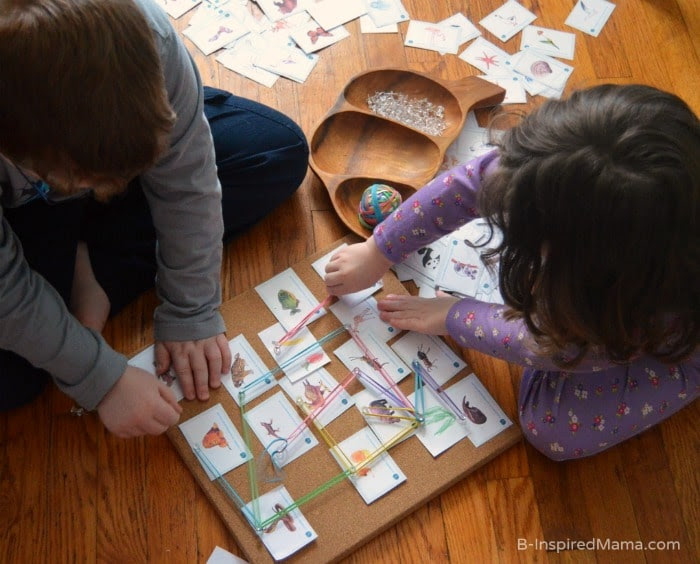 Playing with a Hands on Food Web Board - Science for Kids at B-Inspired Mama