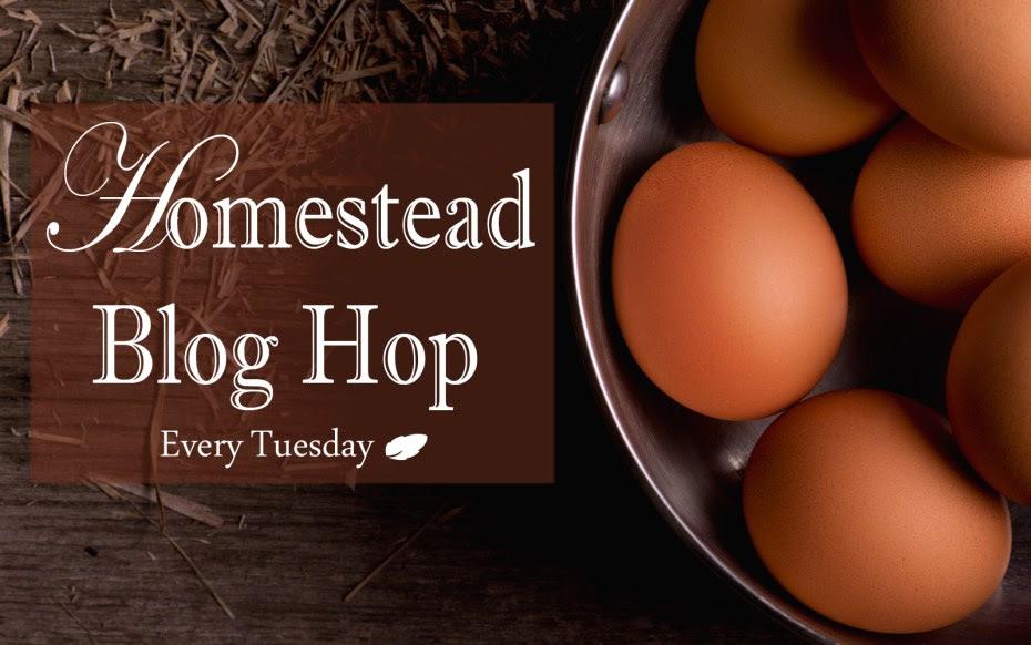 Homestead Blog Hop - Every Tuesday! | Real food recipes, live stock, crafts, DIY, how-to's, gardening, homeschooling, natural home and health, self-sufficiency, self-reliance, natural remedies, essential oils, and more! |Featured post: DIY Seed Tape | Whole-Fed Homestead