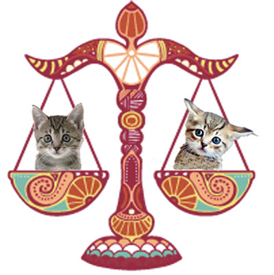 The Politics of Being A Libra Cat
