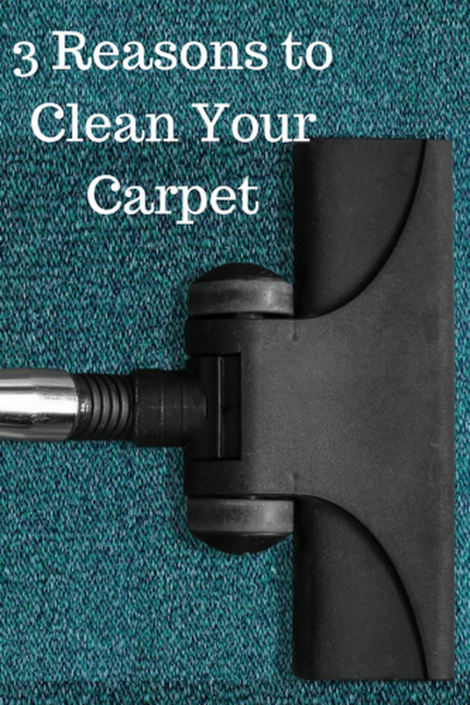 3 Reasons to Clean Your Carpet - Mom and More