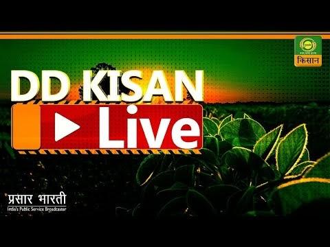 Watch DD Kisan Live   Hindi   India