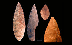 Bifacial points recovered from Blombos Cave, South Africa.