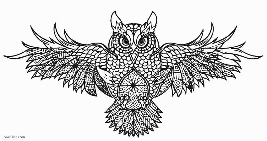 Free Printable Owl Coloring Pages For Kids | Cool2bKids