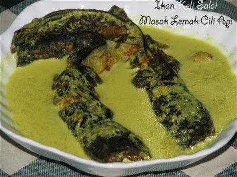 pertanian  perniagaanikan keli resepi ikan keli