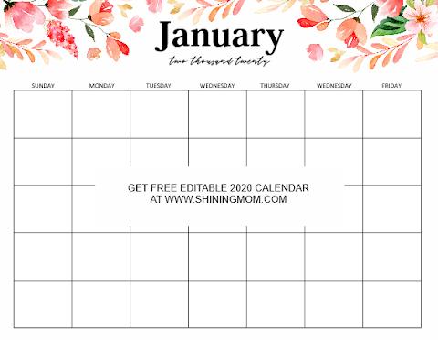 Printable Monthly 2020 Calendar Template Word