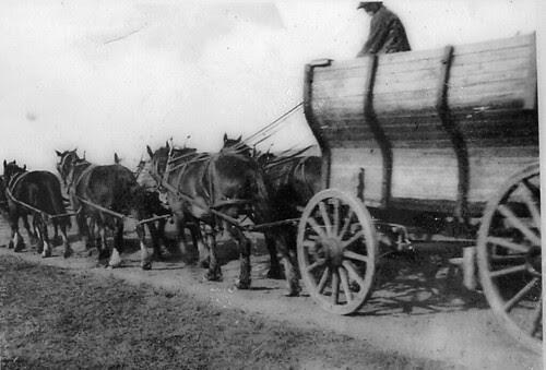 Pioneer wagon, Minnetonka