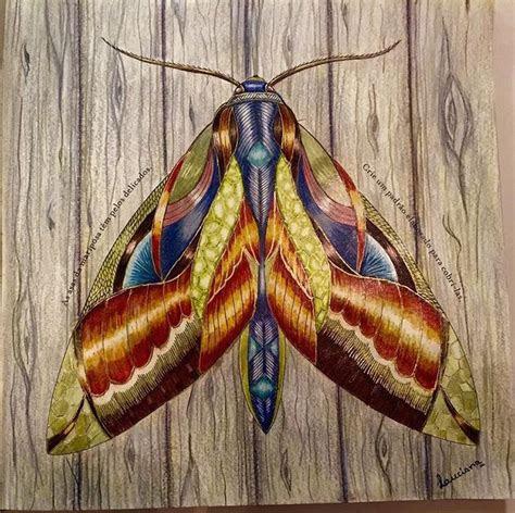 millie marotta nature coloring books color pencil art