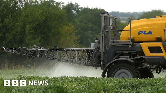 Monsanto ordered to pay $289m damages in Roundup cancer trial - BBC News