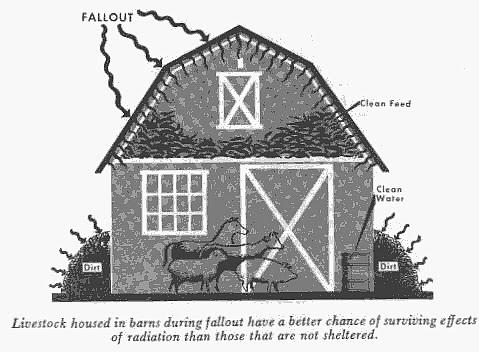 farmfig3.jpg (76844 bytes)