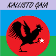 Kallisto Gaia Press Submission Manager