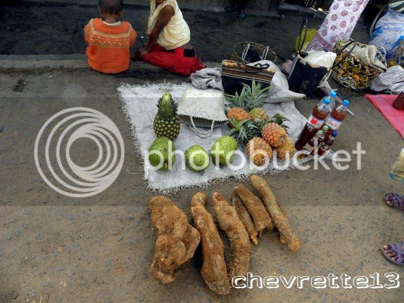 http://i1252.photobucket.com/albums/hh578/chevrette13/Madagascar/DSCN1383800x600_zps2c60d11e.jpg
