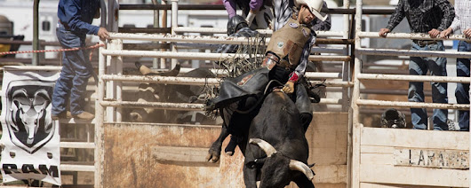 Catch All the Excitement at the Kansas State College Rodeo
