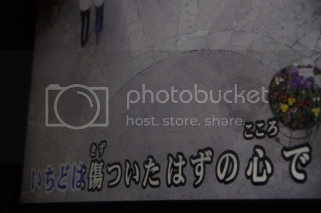 photo _MG_2516_zps22241413.jpg