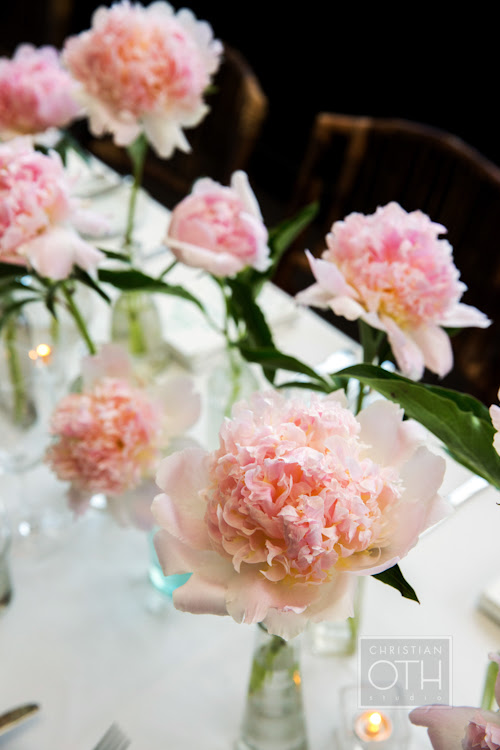 Pretty Peonies at the Gramercy Park Hotel