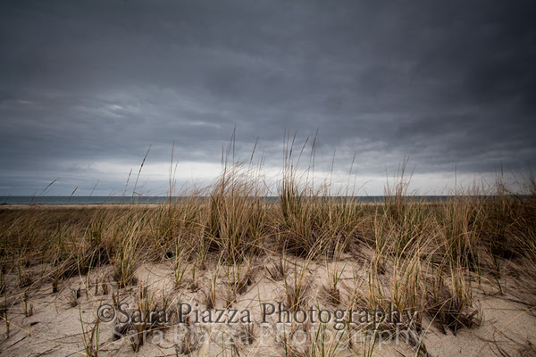 sara piazza photography, edgartown news, state beach, edgartown, vineyard photographer