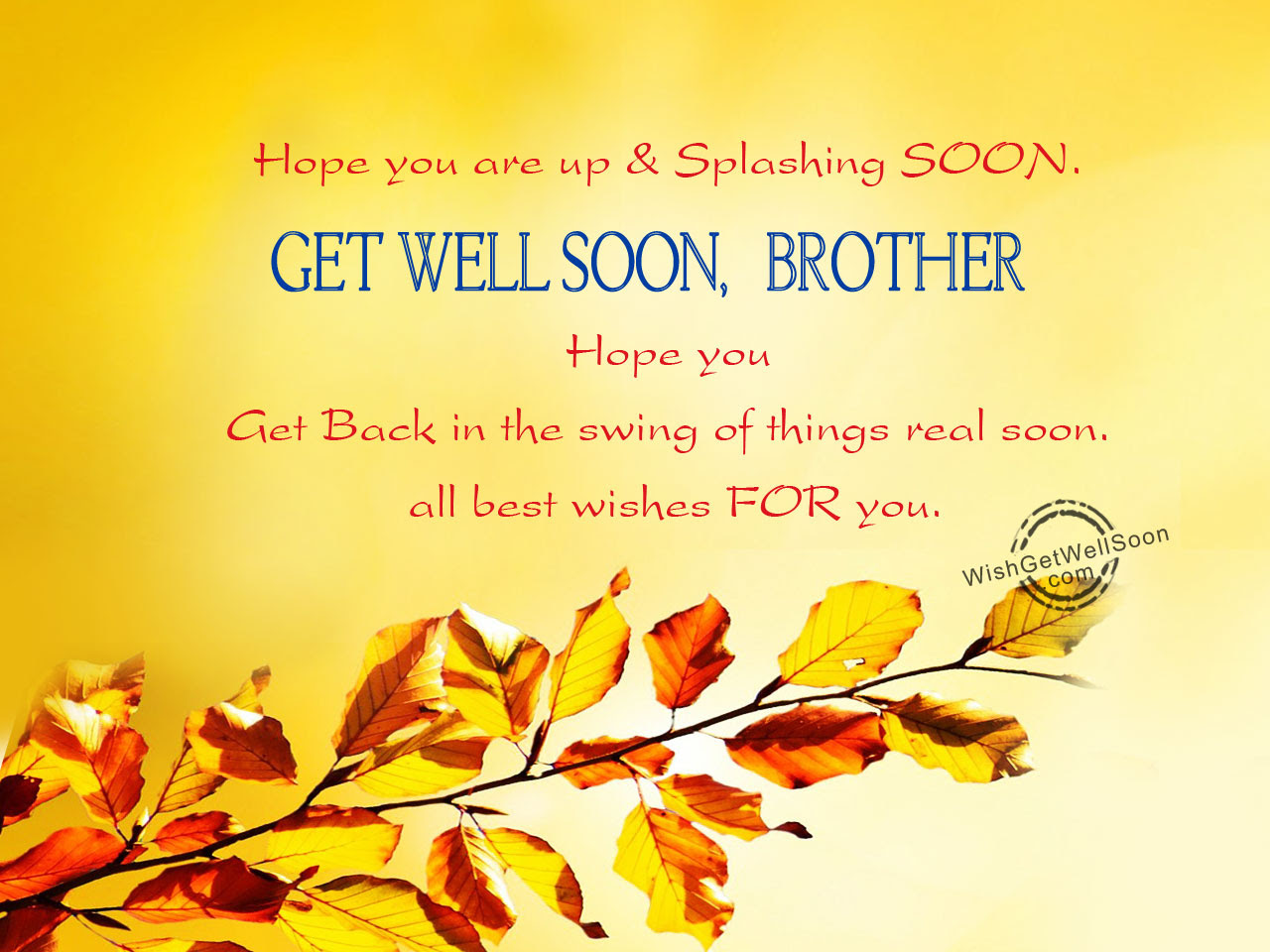 Get Well Soon Wishes For Brother Pictures Images Page 4