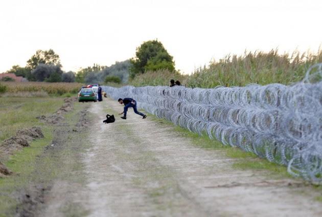 Ungheria, migranti che oltrepassano il confine metallico serbo-ungherese