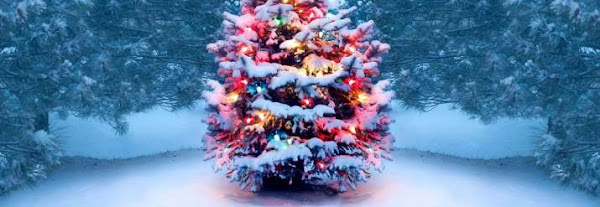 Merry Christmas 2020: Wishes, Quotes, HD Images, Facebook Greetings, WhatsApp statuses, Messages for friends