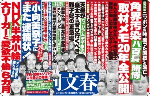 http://www.bunshun.co.jp/mag/shukanbunshun/adv/110217.htm