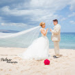 Affordable Destination Weddings - Choose Maui, here's how!
