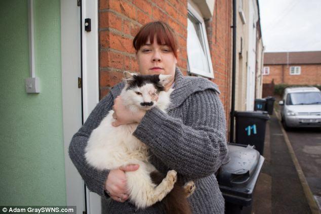 Figura: Kirsty Sparrow, 26, crede che il suo gatto Baz è stato aggredito e scaricato perché sembra Hitler