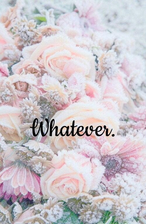 Iphone 6 Flower Wallpaper Tumblr