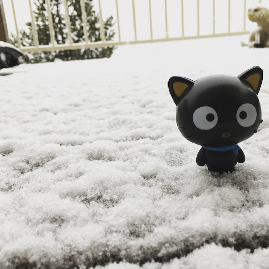 Chococat's Blizzard. Day #1. Continued.