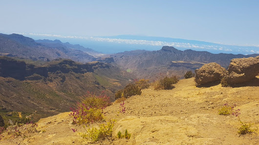Gran Canaria Excursions: Top 20 Day Trips & Tours