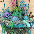 Set a Place in the Garden for a Succulent Chair Planter - Garden Therapy