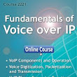 New Course!  Fundamentals of Voice over IP | Telecommunications Training, IP, VoIP and MPLS Training Blog