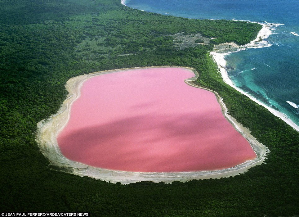 Hiller Lake: (Western Australia) Scientists cannot explain the pink coplour although they have proven it is not due to the presence of algae