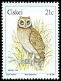 Cl: Marsh Owl (Asio capensis) SG 177 (1991)