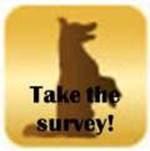 Joint Supplement Survey For Dog Parents