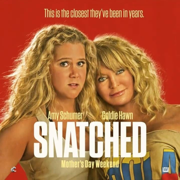 Image result for snatched