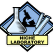 How to Use the Niche Laboratory to Find Niche Ideas