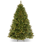 National Tree Winchester Pine Tree with Clear Lights Size 6.5 ft - National Tree - WCH7-300-65