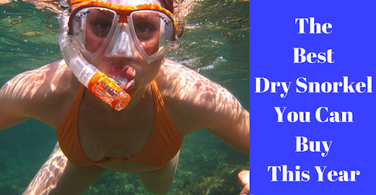 The Best Dry Snorkels available [snorkeling fun guaranteed]