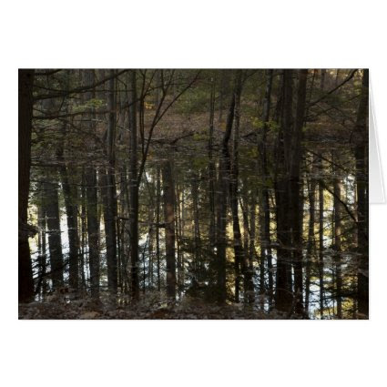 Water Trees III Greeting Card