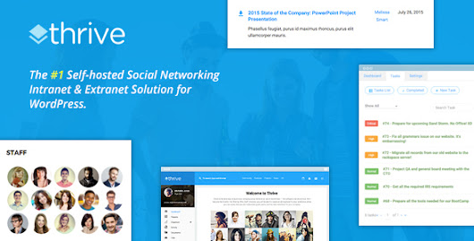 Thrive - Intranet & Community WordPress Theme