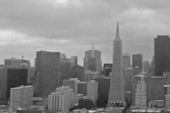 Coit Tower - Financial District
